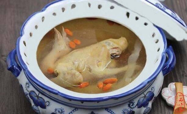 鸽子枸杞汤